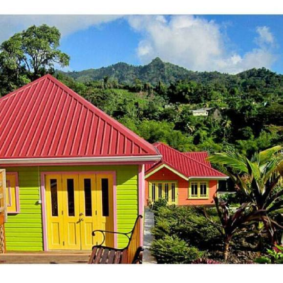 Tropical colours