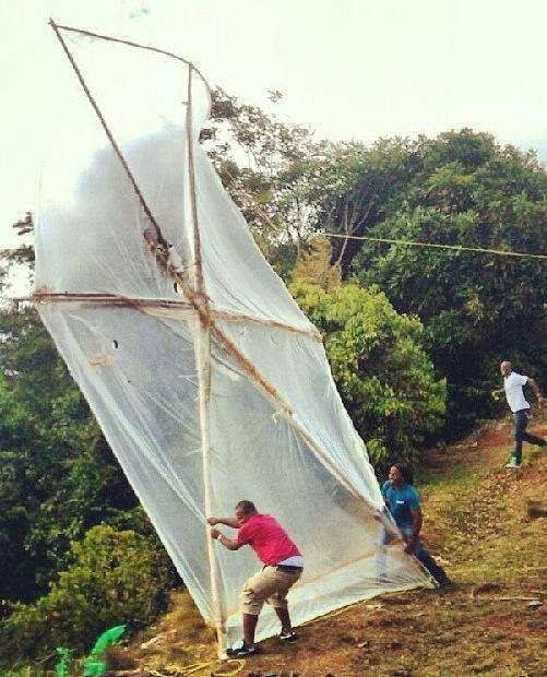 wow big kite
